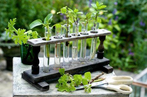 A novel way of taking water cuttings