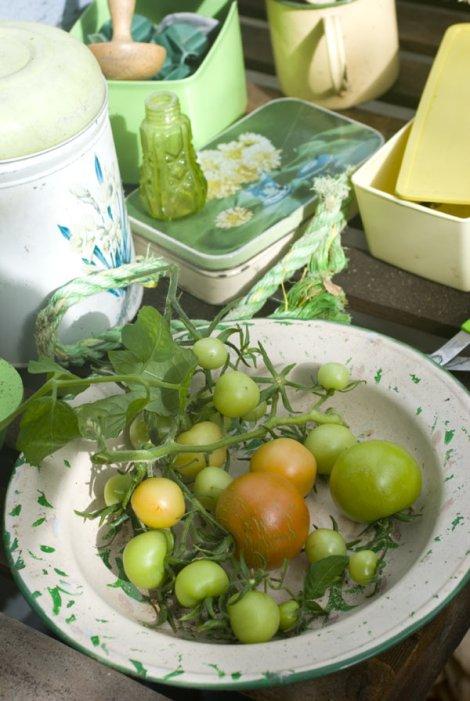 ripeningtoms