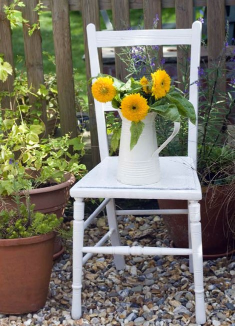sunflowers-on-chair