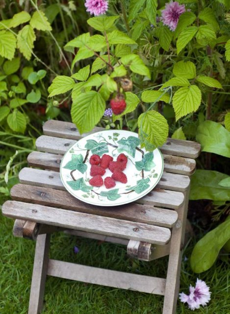raspberries-on-plate