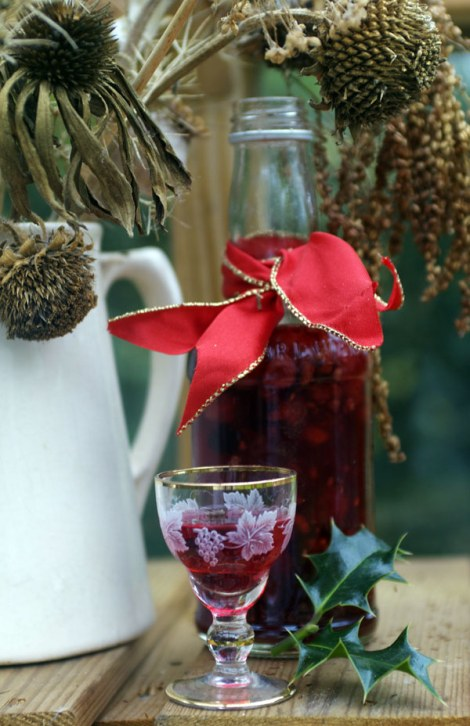 Raspberry-Vodka
