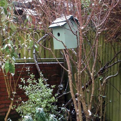 birdbox-winter